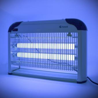lampe bleu moustique