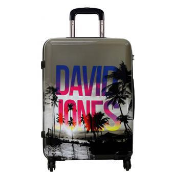 valise david jones